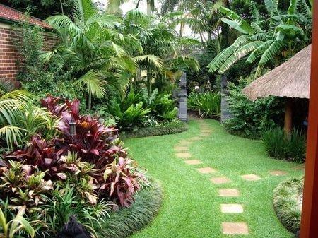 Jasa Tukang Taman Jagakarsa Tukang Taman Tropis